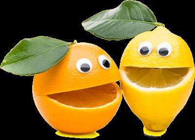 orange-lemon-left-hero-panel-fruit